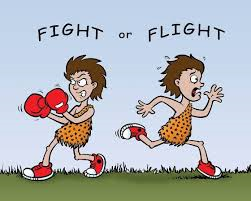 Fight or Flight cartoon