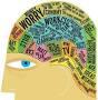 Busy brain